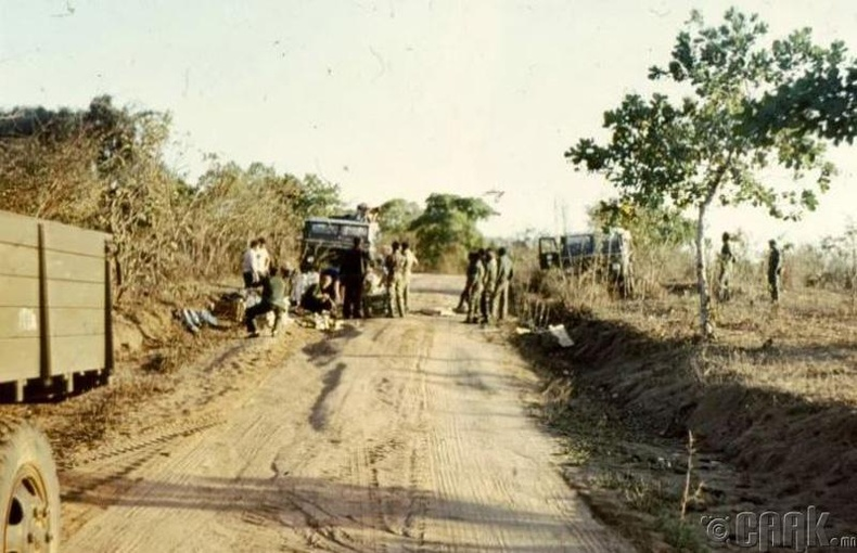 Мозамбик - 2.5 оноо