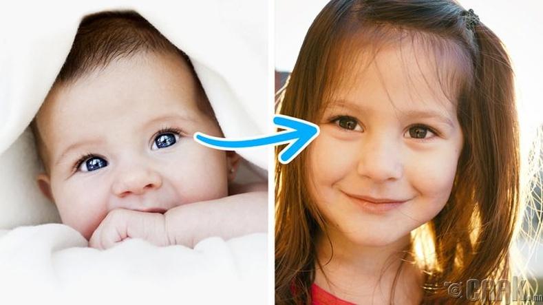 Дэлхий дээр хамгийн их тархсан нүдний өнгө бор боловч бодит байдал дээр хүн бүр цэнхэр нүдтэй