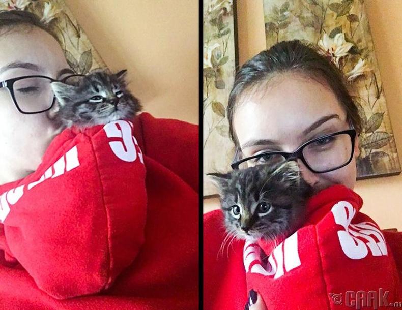 Муураа зөөвөрлөх арга