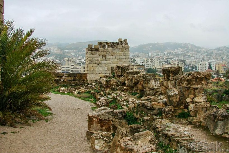 Библос (Ливи) - МЭӨ 5000