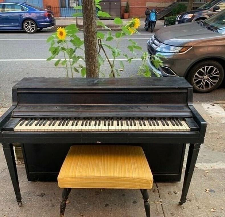 """""""Ийм төгөлдөр хууртай болохыг хэчнээн их хүсдэг байсан гээч."""""""