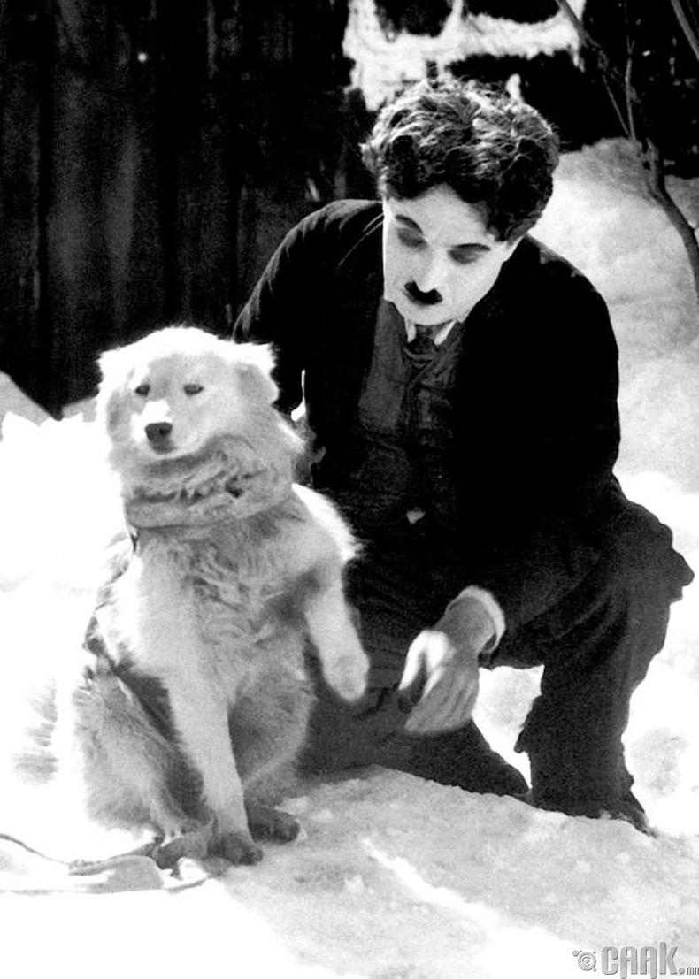Жүжигчин Чарли Чаплин (Charlie Chaplin) - 1925 он