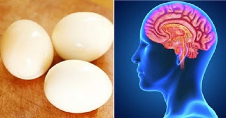Өдөр бүр 3 ширхэг өндөг идвэл бидний биед юу болох вэ?