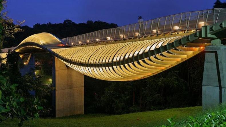 """Сингапурын """"Давалгаат гүүр"""""""