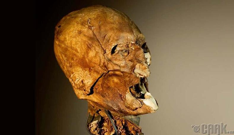 400 жилийн өмнө цаазлуулсан хүний толгой
