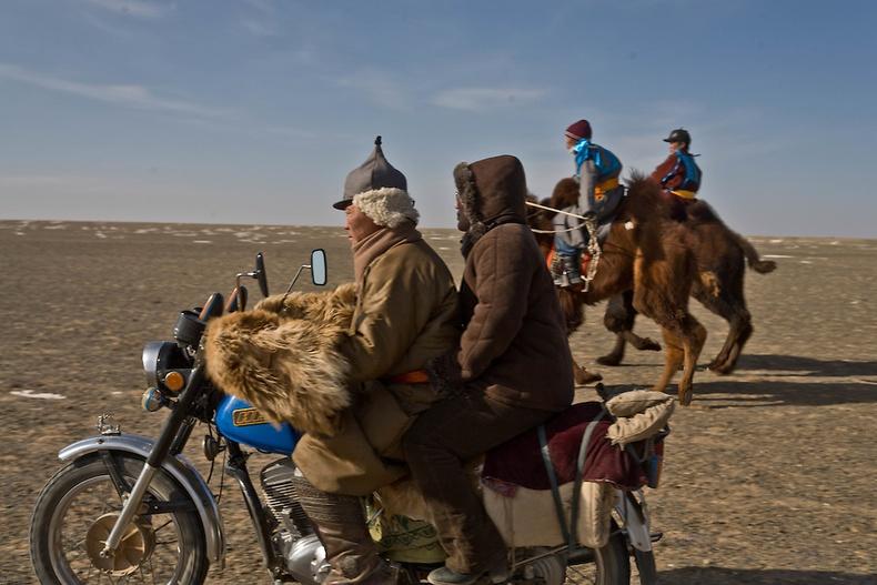Тэмээний уралдаан - Өмнөговь аймаг