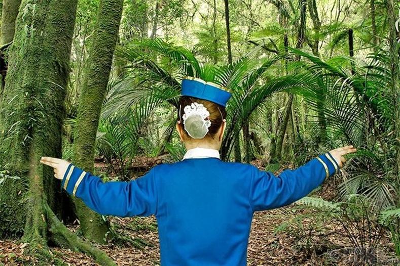 Ширэнгэн ойд амьд гарах чадвартай байх