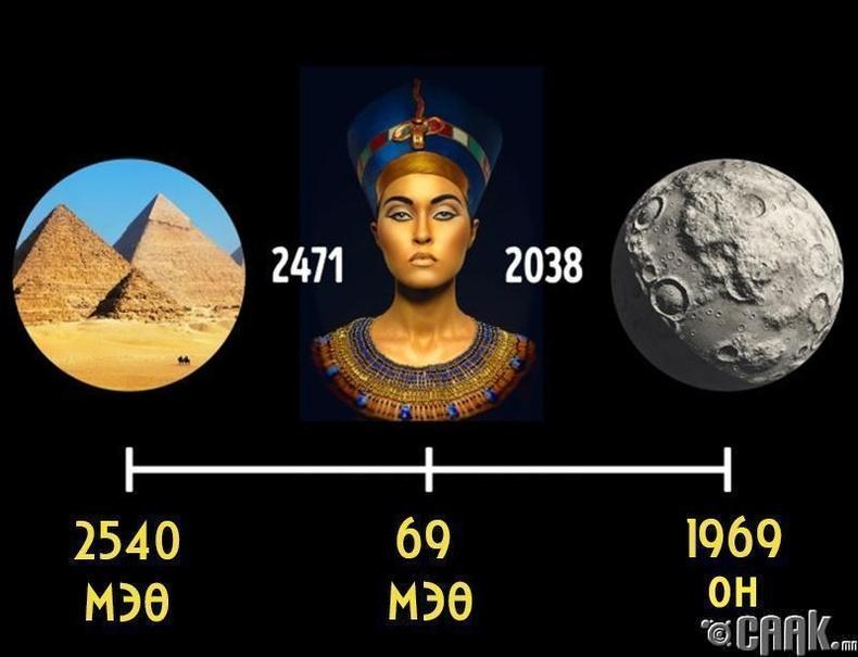 Клеопатра хатан (Cleopatra)