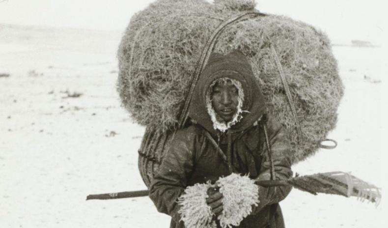 Швед ламын 1913 онд Монголд ирэхдээ авсан сонирхолтой зургууд (30 фото)