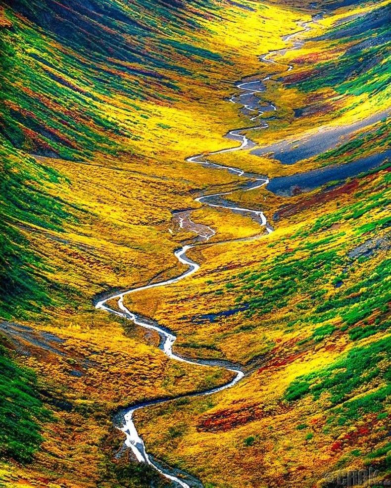 Голын хөндий - АНУ, Аляска