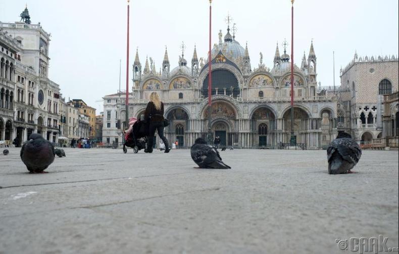 Венецийн төвд байрлах Гэгээн Маркын талбай