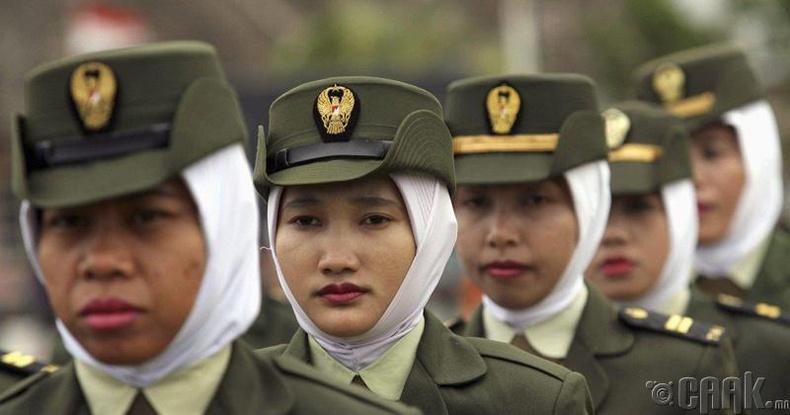 Индонезийн жигтэй цэрэг арми