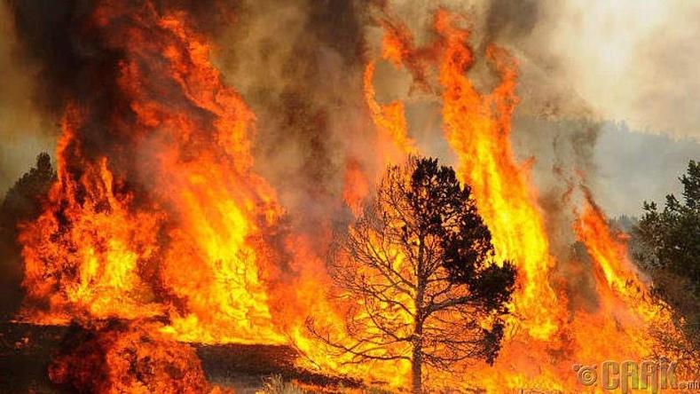 Хот суурин, ой хээрийн түймэр гарсан үед яах вэ?