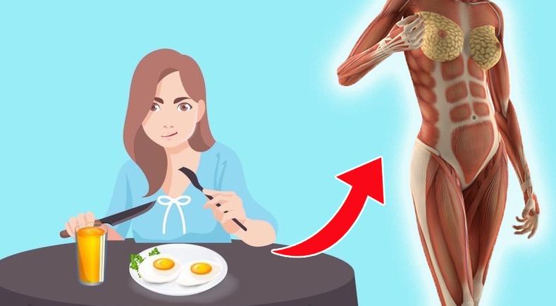 Өдөрт 3 өндөг идэхэд таны биед ямар өөрчлөлт гарах вэ?