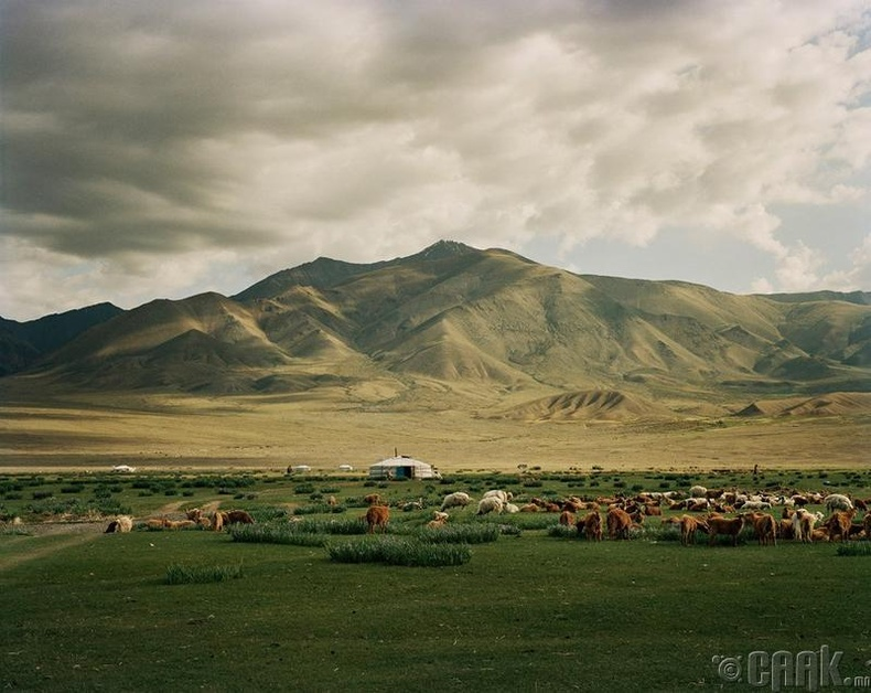 Монголын хавар хамгийн үзэсгэлэнтэй байсан хэмээн дурдав