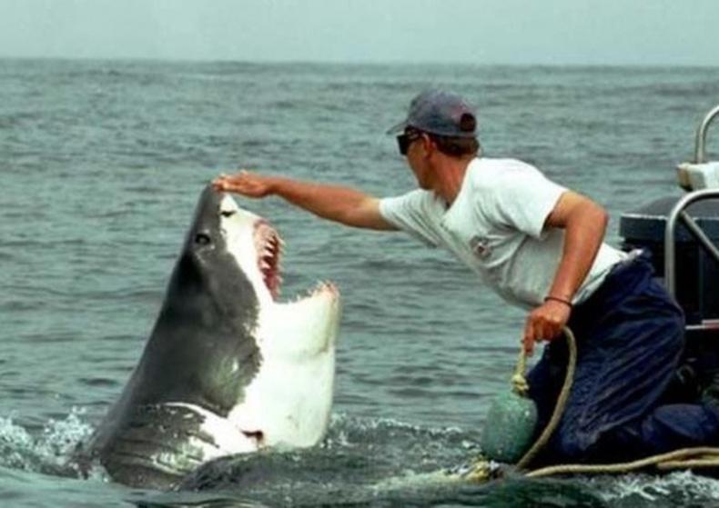 Аварга махчин загас тэжээдэг залуу
