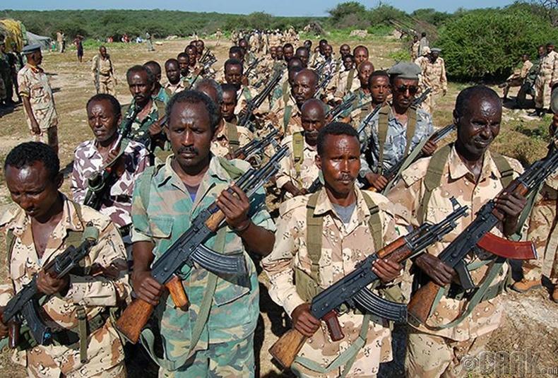 """""""Сомалийн нөхцөл байдлыг хэвийн болгохыг оролдох нь гахай угаахтай л адил"""""""