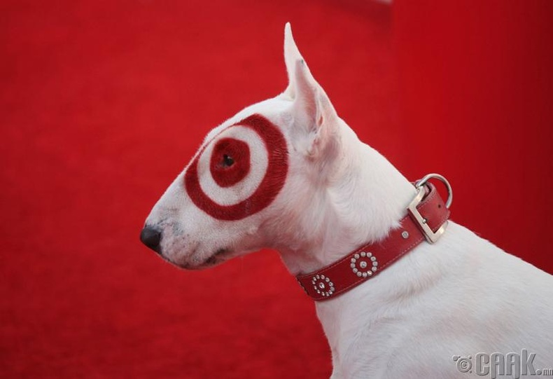 """Target"" -ийн дайралт"