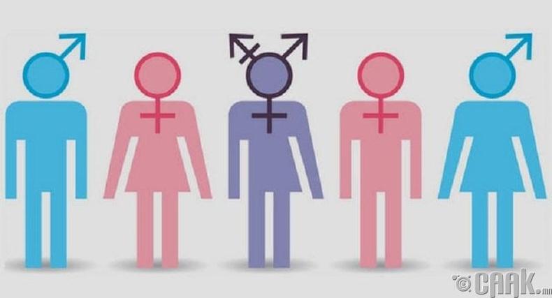 Еврейн 6 хүйстнүүд