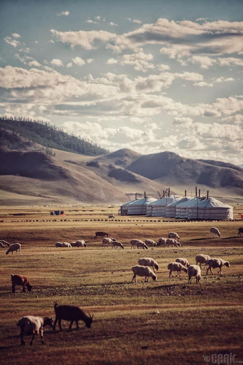 Монголын амгалан хөдөө
