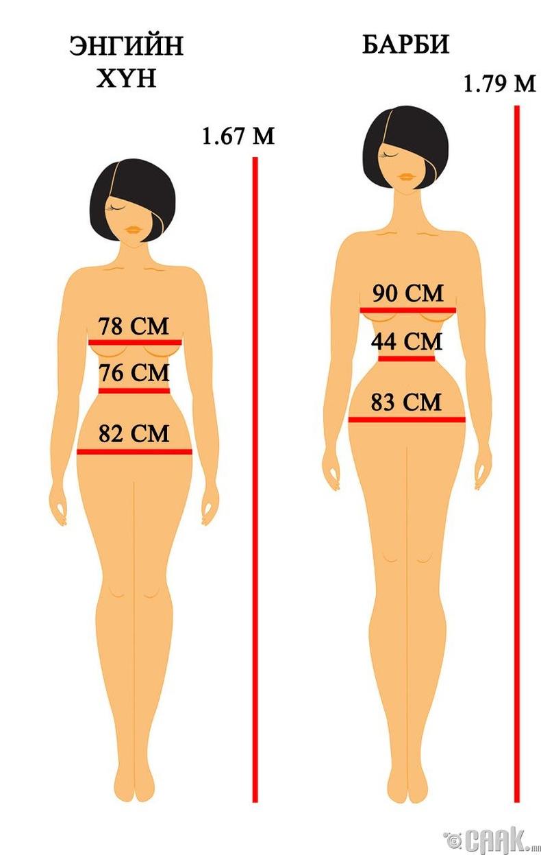 Барби хүүхэлдэйн биеийн пропорц бодит амьдрал дээр