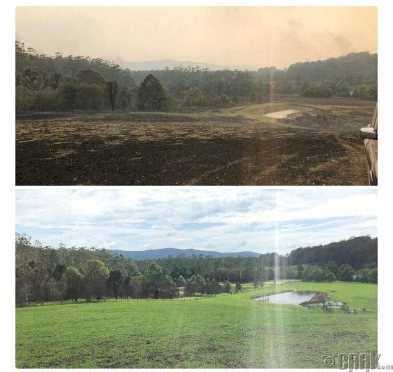 Түймэрт шатсан газар 10 жилийн дараа