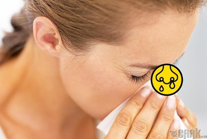 Хамрын хөндий өвчлөх