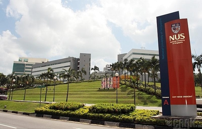 Сингапур улсын үндэсний их сургууль (National University of Singapore)