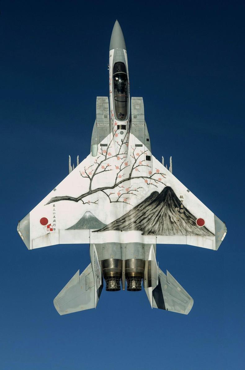 Японы агаарын хүчний сөнөөгч онгоц
