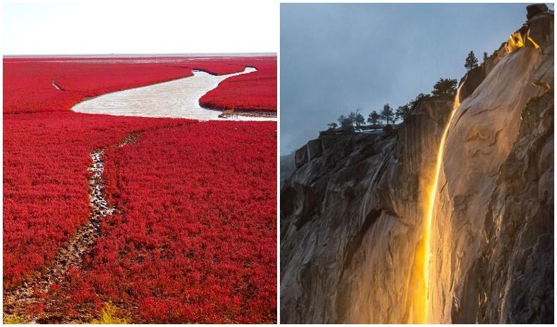 Жилд ганц л удаа харах боломжтой байгалийн гайхамшигт үзэгдлүүд