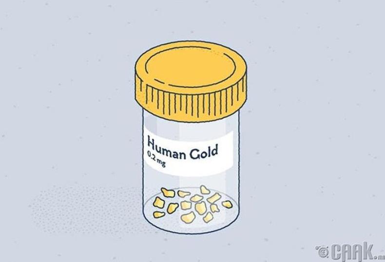 Бидний биед 0.2 мг алт бий