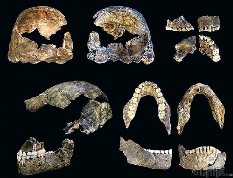 Эртний хүмүүсийн олдвор