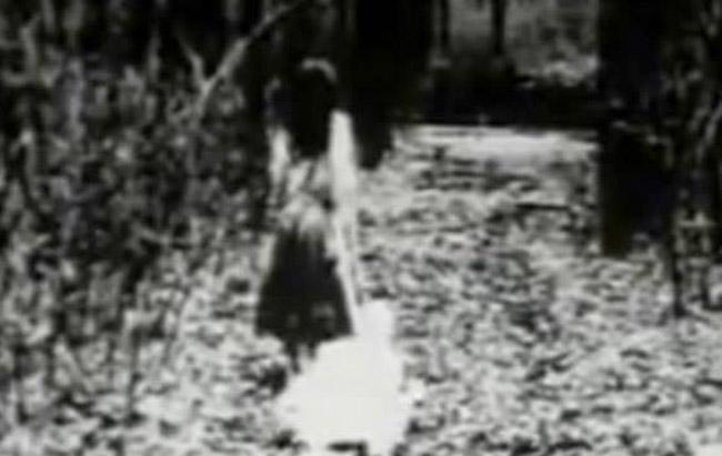 Дэлхийн хамгийн айдас төрүүлэм бичлэг
