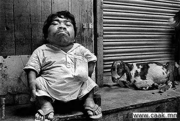 Дэлхийн хамгийн жижигхэн залуу