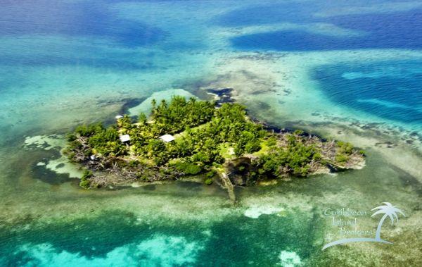 Карибын арлуудаас аль нэгийг нь худалдаж авах уу?