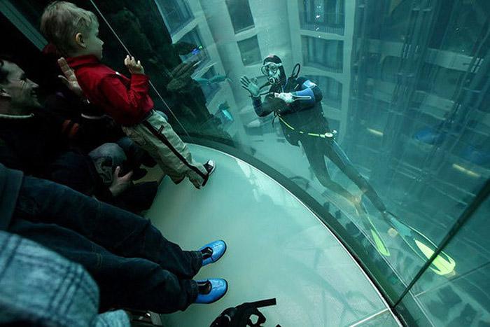 Дэлхийн хамгийн том аквариум