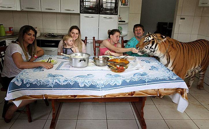 Бартай амьдардаг гэр бүл