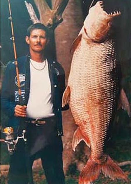 Уургаар барьсан хамгийн том загаснууд