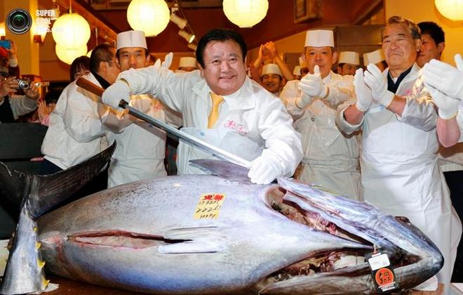 Хамгийн үнэтэй туна загас