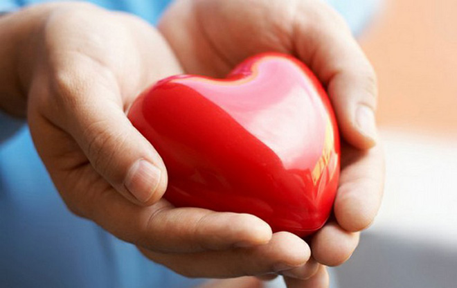 Зүрхний талаар сонирхолтой баримтууд