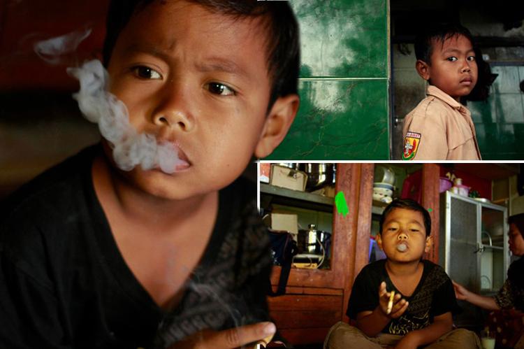 7 настай тамхичин хүү