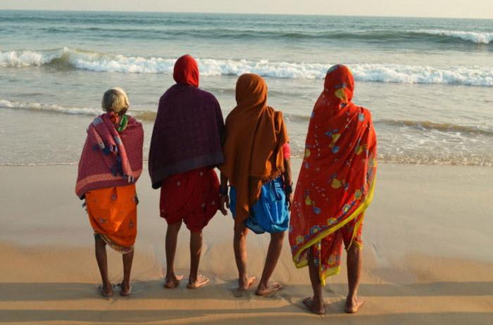 Энэтхэгийн наран шарлагын газар
