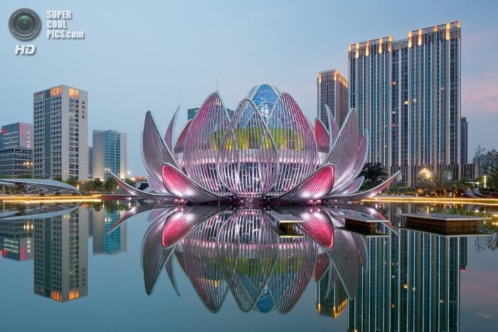 """Хятадын """"бадамлянхуа цэцгэн"""" барилга"""