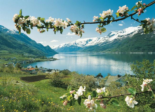 Норвегийн үзэсгэлэнт байгаль