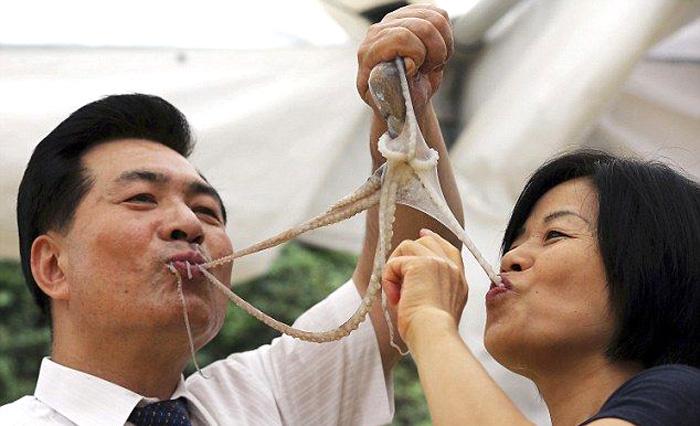 Өмнөд Солонгосын тансаг хоолонд дурлагчид амьд наймаалж идэж байгаа нь