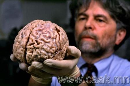 Тархи биднийг элдэв муу зуршлын хүрээнд 5 янзаар барих гэж оролддог