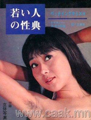 Япончуудын 1960-аад оны бэлгийн боловсролын ном