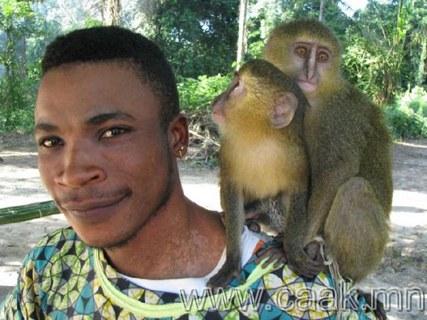 Сармагчингийн шинэ төрлийг илрүүлжээ